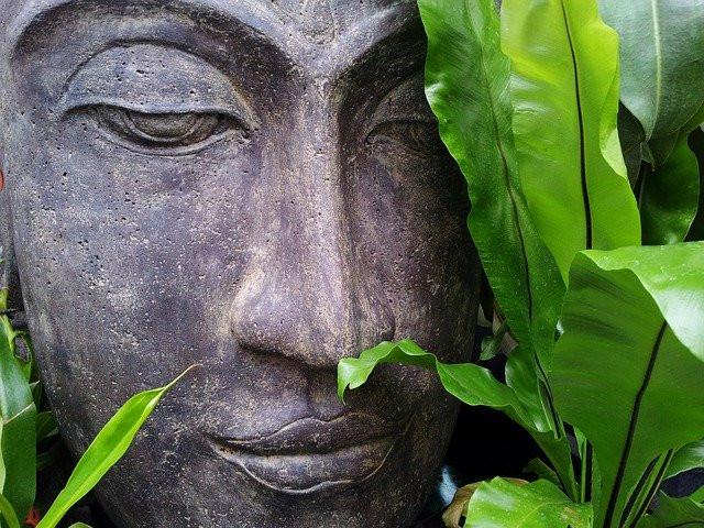 Peaceful Buddha amid green leaves